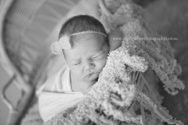 Sippy Downs Family Amp Baby Photography On The Sunshine Coast